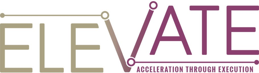 Elevate Accelerator by TheVentury
